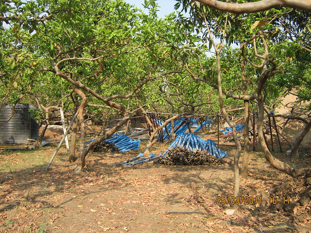 Construction material in the orchard at DSK Gandhkosh Baner Pune