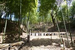 鴨居原市民の森(よんやま広場、Kamoihara Community Woods)