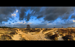 even holland has its deserts (Wim Koopman) Tags: holland netherlands dutch photography photo sand desert dunes stock nederland op duinen loon stockphoto zand stockphotography drunense wpk loonse