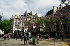 Primavera a Parigi (Morgause666) Tags: paris france frankreich europa europe ledefrance eu francia europeanunion parigi 4e