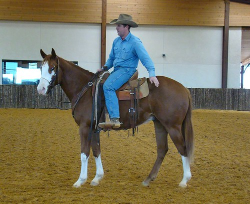 Track of Gold Under Saddle