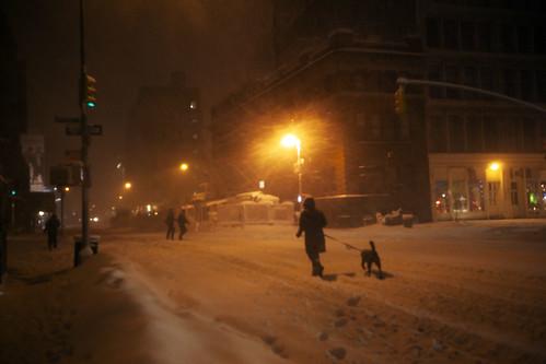 Dog Walking Lafayette New York Blizzard, January 26, 2011