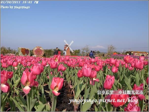 台中后里_中社光觀花市20110130_R0017643