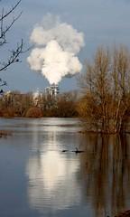 Magdeburg schickt den Mll gen Himmel (reuber54) Tags: schnee winter magdeburg eis mll spiegelbild elbe hochwasser 2011 eiskunst