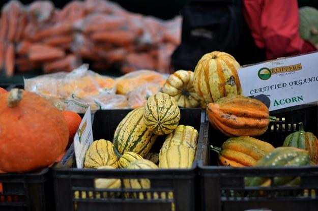 Market pumpkin