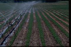 Uvalde to host Feb. 2 South Texas Irrigation Symposium