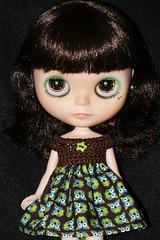 Life's A Hoot Custom #4 ~ Dark Brown Foiled Eyes