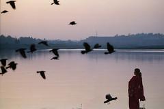 don't forget me (nandadevieast) Tags: woman film up birds river evening nikon taj tajmahal agra nikkor fm3a 135mm anurag fm3 uttarpradesh yamuna 2069 riveryamuna 135f35 anuragagnihotri agnihotri nandadevieast tajmehal nikkor135f35 nikon135f35