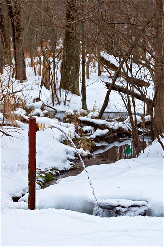 Artesian Well in Winter