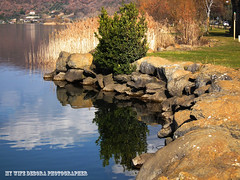 lago (16) (frens_deby) Tags: lake lago island isola lagodibolsena hs10 lakeofbolsena
