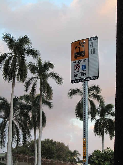 Bus Stop, Hawaii, Oahu, Honolulu