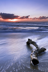 Cronulla Sunrise (Luke Peterson Photography) Tags: sky cloud water sunrise waves driftwood filter