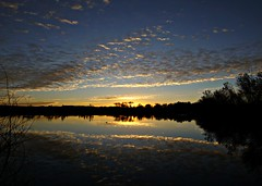 Born on the Bosque (Ph0tomas) Tags: trees sunset sky lake newmexico water clouds sunrise river landscape lumix pond g g1 f4 socorro 714 vario mygearandme ph0tomas