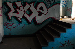 Live Stairs (nitram242) Tags: chicago abandoned ice fire graffiti factory marcus live coh harris 511 harrismarcus
