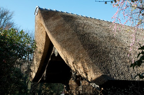 Sugimotodera thatched roof