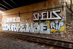 rest in peace (Luna Park) Tags: nyc ny newyork graffiti rip tracks poke lunapark rollers woe tem smells trackside ikso