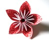 Paper Flower - Red Damask
