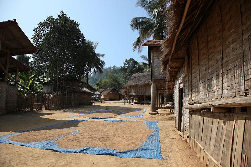 Village IMG_1427-w