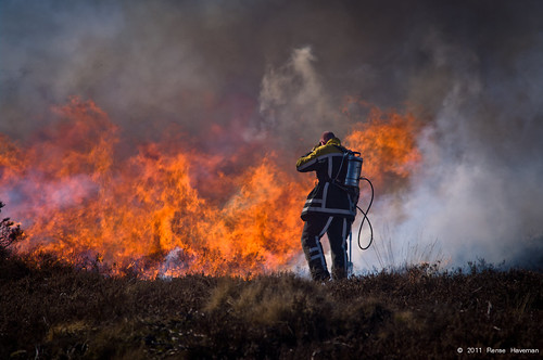 Heathland Burning