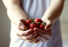 day forty-two. (explored & front page!) (Erin Rena) Tags: light boy shadow red blur color guy green art fruit canon out photography 50mm stem holding hands focus berries arms erin vibrant fingers fine strawberries husband seeds explore nails f 365 held 18 tones frontpage knuckles rena explored erinrena