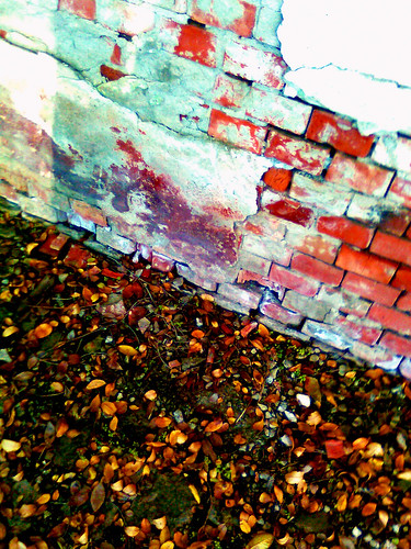 Bricks & Leaves by Chaos_Inside