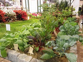 Vegetable Border at the 2011 Philadelphia Flow...
