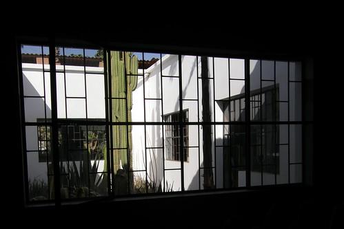 20100315061