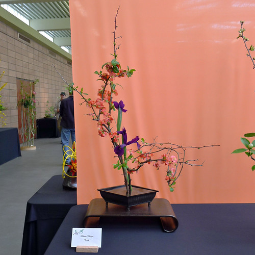 Enshu arrangement