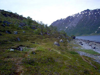 Sami and norse in iron age Northern Troms I
