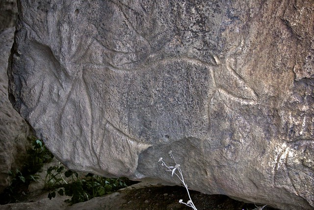 Petroglyphs, Qobustan