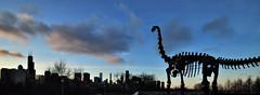 Breaking News!!! Giant Lizard Terrorizing the City of Chicago!!! (Seth Oliver Photographic Art) Tags: chicago illinois nikon midwest skyscrapers searstower silhouettes southloop pinoy downtownchicago chicagoskyline urbanscapes secondcity chicagoist fieldsmuseum d90 handheldshot cityofchicago cityofbigshoulders moderncities sunsetshots aperturef90 manualmodeexposure willistower setholiver1 tonemappedimage 0005secondexposure 1024mmtamronuwalens sunsetimagesinthecity croppedtopanomode cityscaapes lakeshoredive dinosauratfieldsmuseum