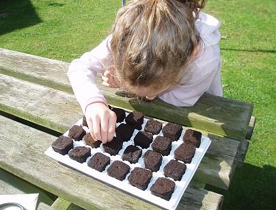Child Planting Seeds