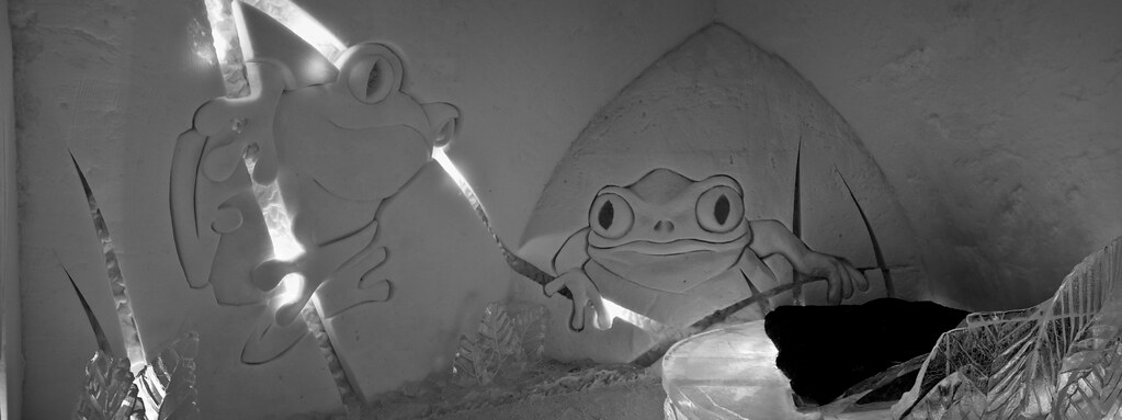 Suite des grenouilles - Hôtel de glace