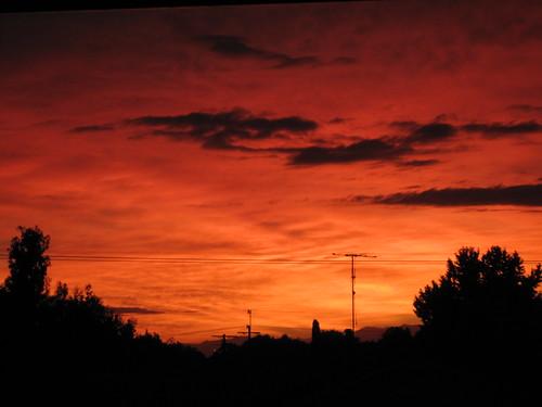 Motueka Sunrise. I don't see many of these