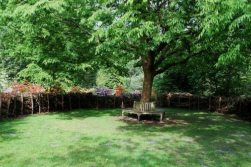 wooden benches around tree and beautiful flowers
