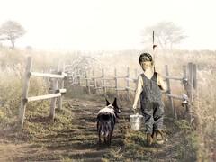 Going Fishing (clabudak) Tags: fog meadow fence country boy dog fishing