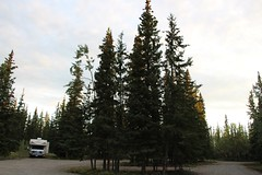 Minto Resort Campground (demeeschter) Tags: canada yukon territory klondike highway lake mountain scenery landscape nature wildlife fire forest river minto resort bald eagle dawn sunrise