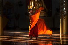 _MG_5331-le-17_04_2016_wat-thail-wattanaram-maesot-thailande-christophe-cochez-cop (christophe cochez) Tags: burmes burma birmanie birman myanmar thailand thailande maesot myawadyy monk bonze novice religion watthailwattanaram travel voyage bouddhisme buddhism portrait