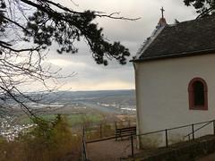 Lieschen (Cary Greisch) Tags: germany geotagged deu rheinlandpfalz lieschen wasserliesch carygreisch geo:lat=4970112200 geo:lon=653516300