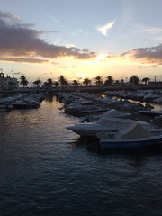 Beautiful harbour lined with palm trees (www.mahliaamatina.com) Tags: sunset sun india lake reflection portugal beautiful beauty clouds river boats spain shiny waves harbour calming shell palmtrees yachts waterdrops incredible sun picture sun reflection sunset breathetaking sea perfect whiteboats sparkling perfect seaspeaks linedboats glistening