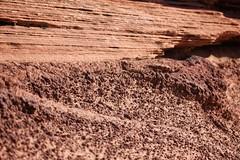 IMG_3459 (emeraldcitycreative) Tags: arizona rock layers geology geological horseshoebend