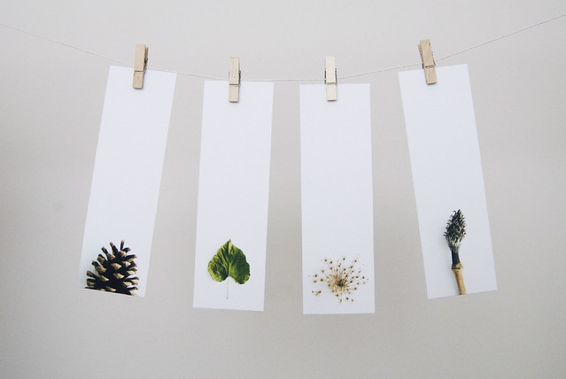 Bookmarks Set Natural Series II