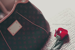 ( ~ ) Tags: flowers love rose canon lv