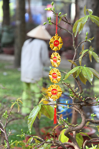 Tet decoration in the park