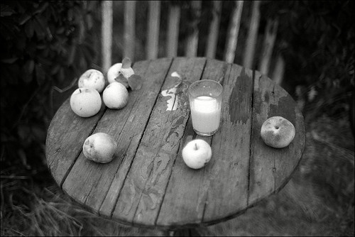 Sunset still-life with the poured milk and seven fallen apples