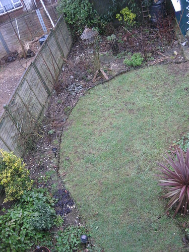 Upper lawn 2/2/2011