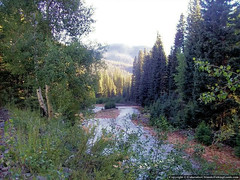 Alamosa River-2 (highcountrytoo) Tags: fishing colorado rivers streams creeks