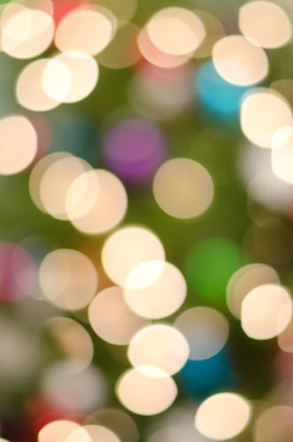 holiday2010-tree-9