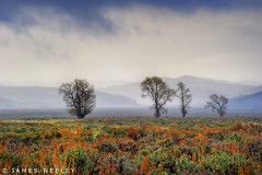 Antelope Flats on a Rainy Day (James Neeley) Tags: landscape hdr grandtetonnationalpark gtnp antelopeflats 5xp jamesneeley