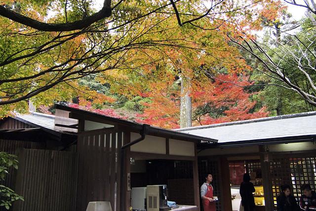 101113_151021_奈良公園_春日荷茶屋